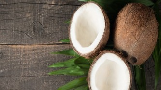 Coconut Amazing Facts
